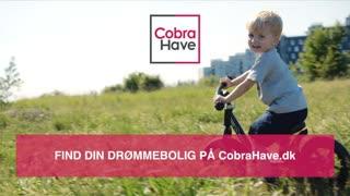 CobraHave WebSpot 37 sek. med tekstoverlejringer