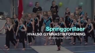 Springgorillaer Gymnastikvideo Hvalsø Gymnastikforening 2017