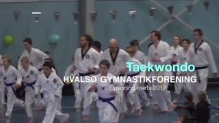 Taekwondo Gymnastikvideo Hvalsø Gymnastikforening 2017
