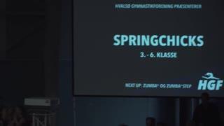 Springchicks
