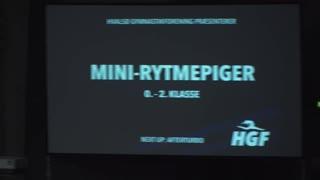 Mini-Rytmepiger