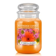 Sunshine & Daisies Kittredge 23oz Candle Jar