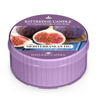 Mediterranean Fig Kittredge Daylight