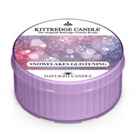Snowflakes Glistening Kittredge Daylight