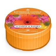 Sunshine & Daisies Kittredge Daylight