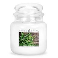 Minted Eucalyptus Goose Creek 16oz Scented Candle Jar