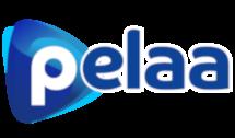 pelaa.com uusi nettikasino