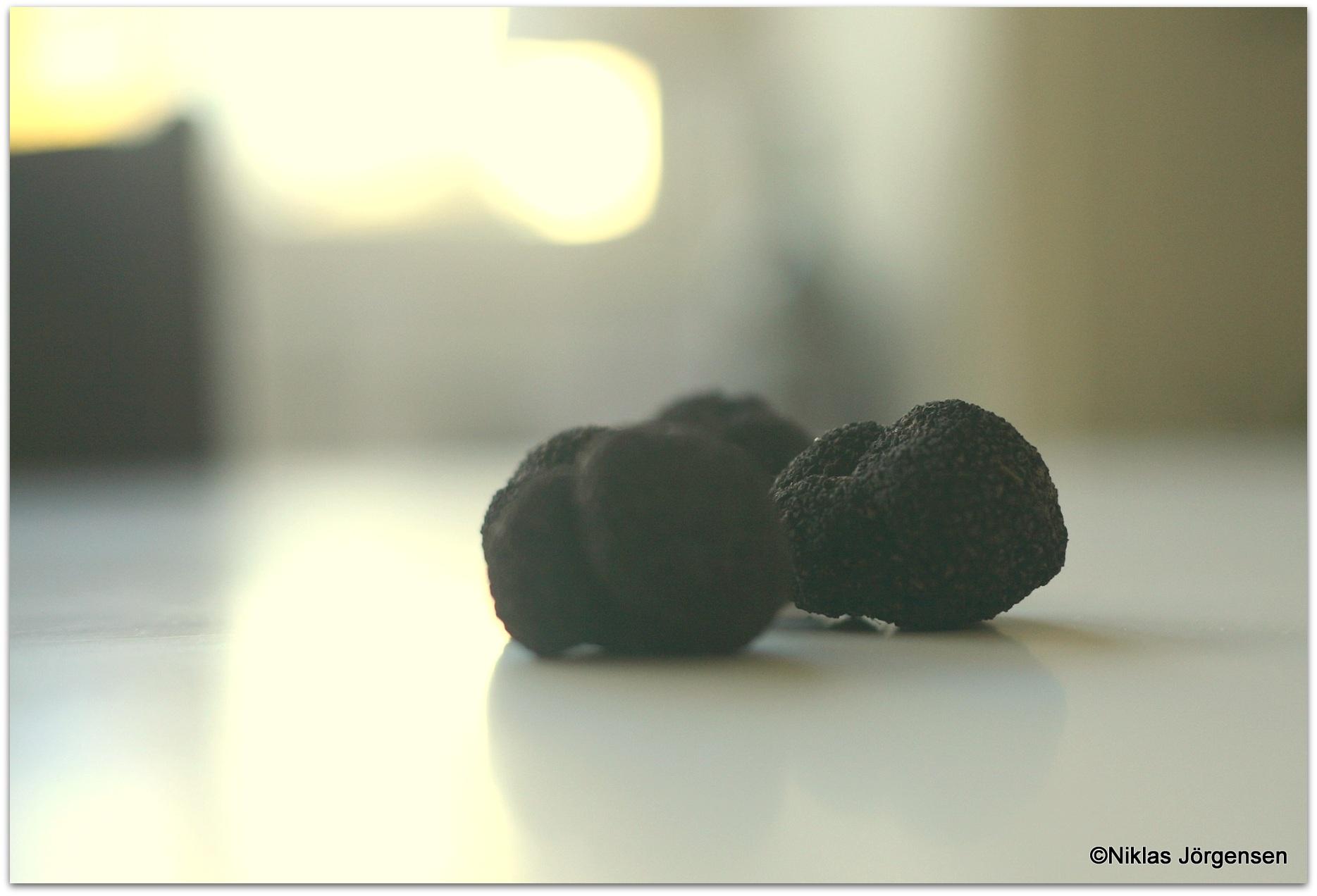 Gotländsk svart tryffel