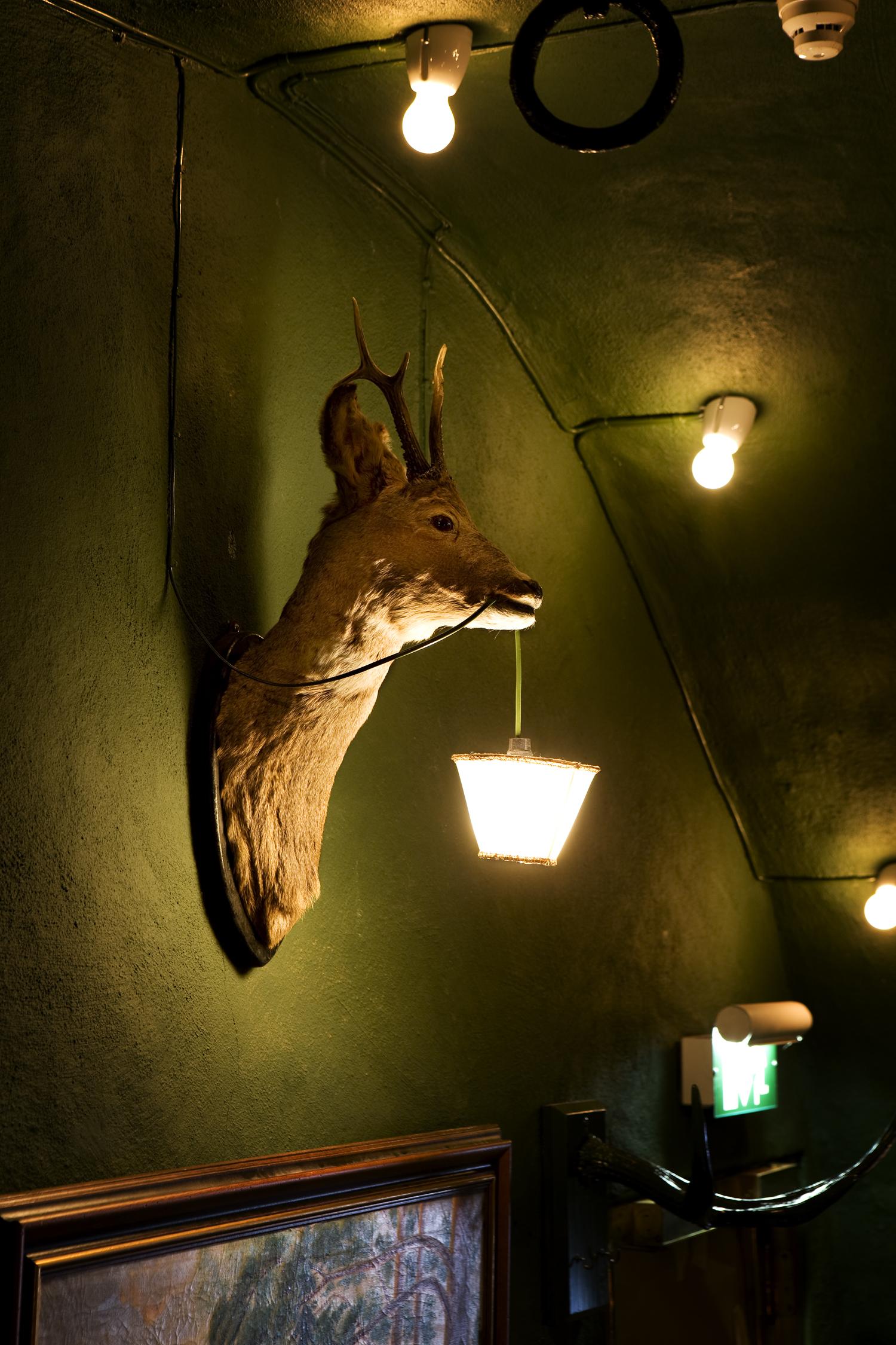 Djuret - Radjur med Lampa