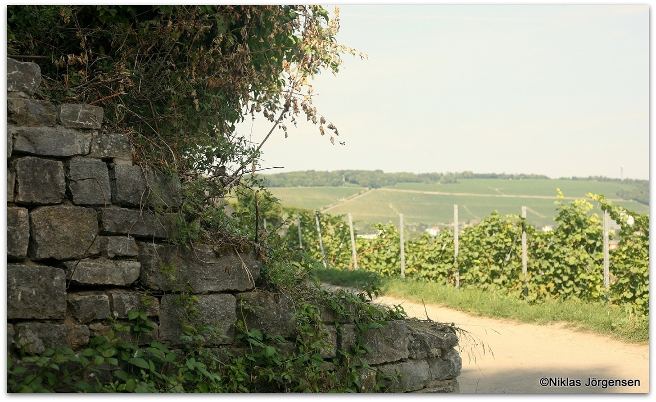 Würzburger Stein