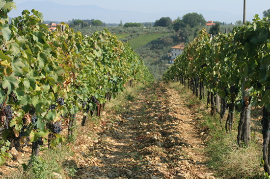 Resa-Toscana