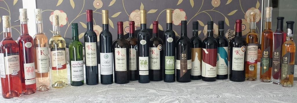 den-stora-svenska-vinprovningen