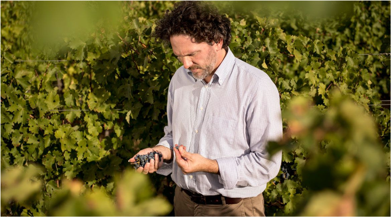 Alex Heinz, vinmakare på Tenuta dell'Ornellaia