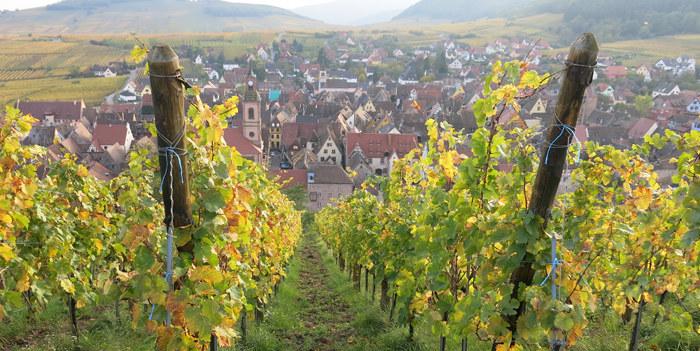 Res-till-Alsace