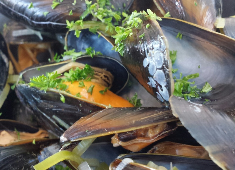 musslor-i-vin-vinbanken