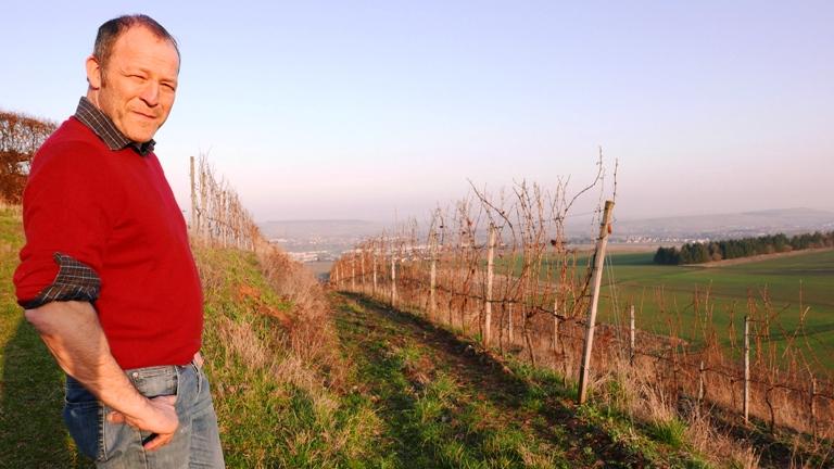 Weingut Burgermeister Schweinhardt i Nahe-vinbanken