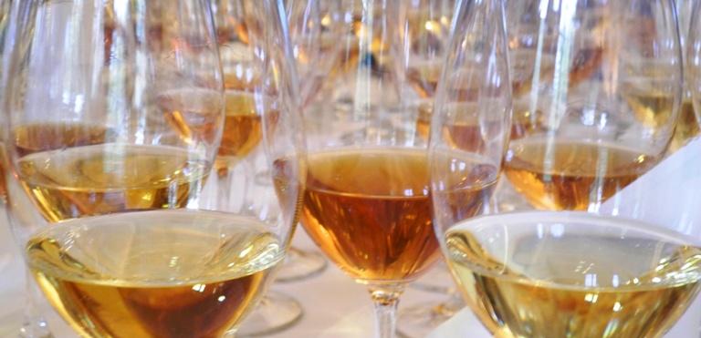 topp-10-vita-viner-med-ny-argan