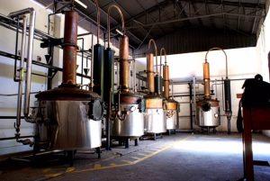 Alambique-piscotillverkning-vinbanken