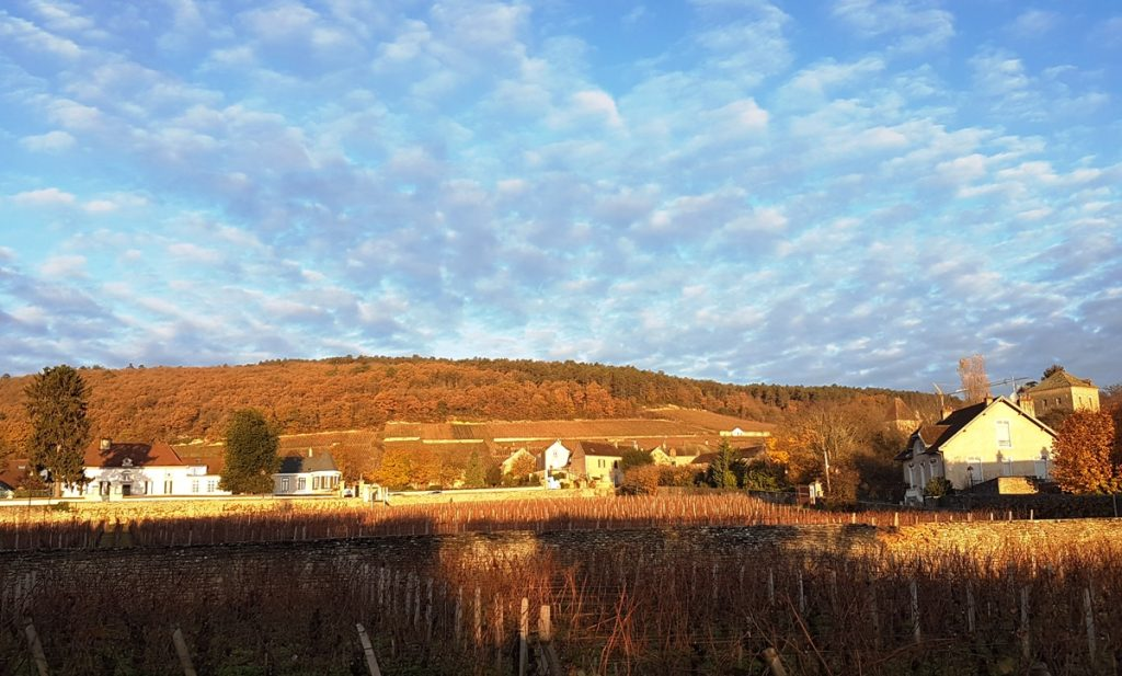 gevrey-chambertin-bourgogne-argang-2016-recenserad-vinbanken