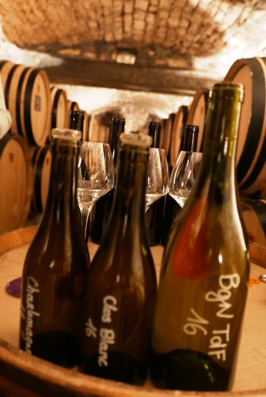 vinprovning-domaine-vougeraie-vinbanken
