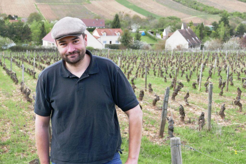 vinbanken-xavier-moissenet-domaine-les-champs-de-themis