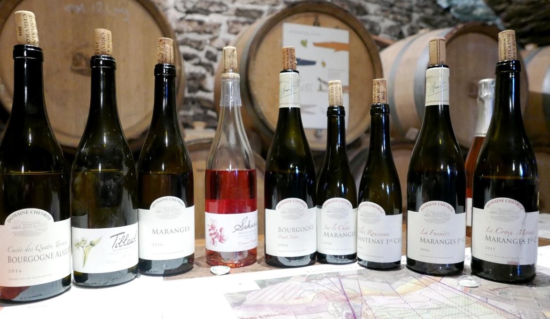 vinprovning-dom-chevrot-et-fils-vinbanken