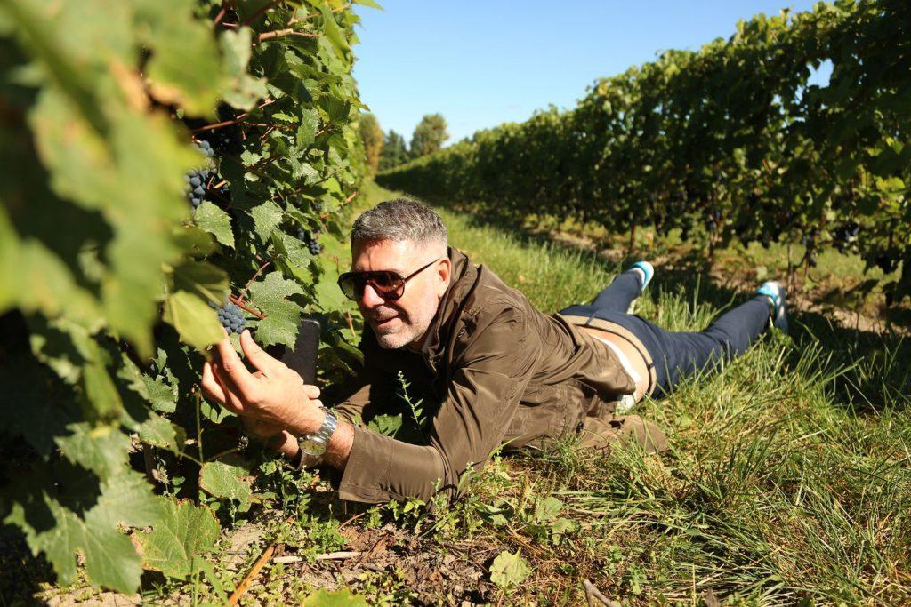 Drew-Lambert-the-wine-wankers-nyarskronika-vinbanken