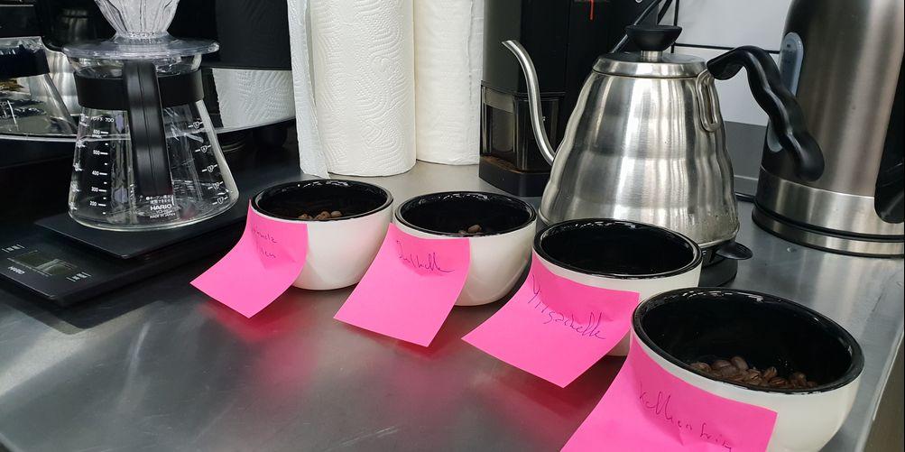 kaffeprovning-kafferosteriet-koppar-vinbanken
