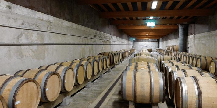vinkallare-William-Fevre-Chablis-vinbanken
