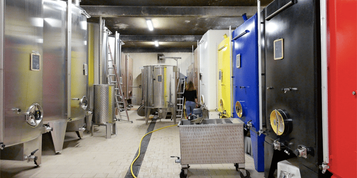 cellar-kallare-domaine-pattes-loup-chablis-vinbanken