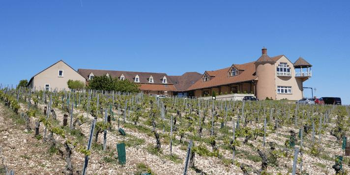domaine-jean-marc-brocard-chablis-vinbanken