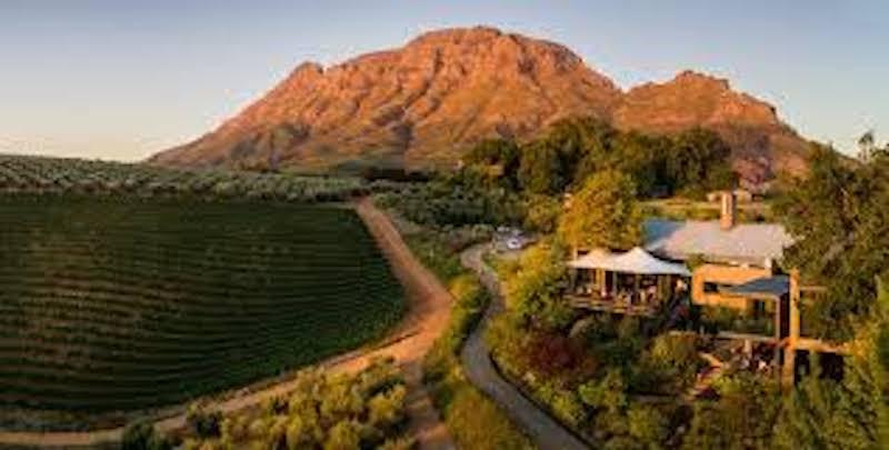 Veckans vinkoplistan 21 - for alla tillfallen-vinbanken