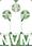 Logo-NVM-witdedf