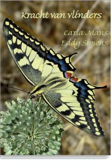 Cover Kracht van vlinders