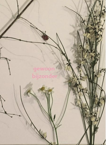 Cover Gewoon Bijzonder