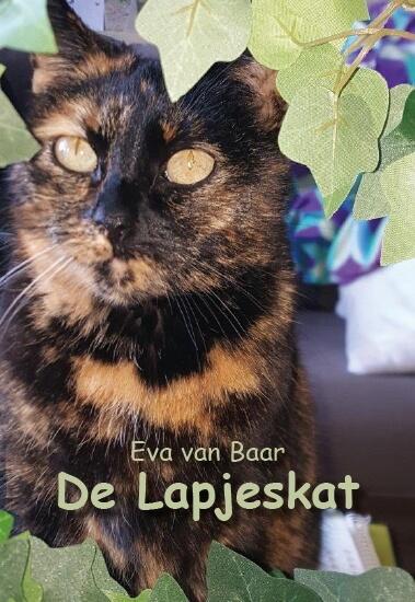 Cover De Lapjeskat