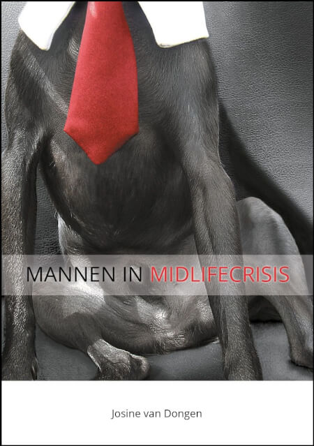 Cover Mannen in Midlifecrisis