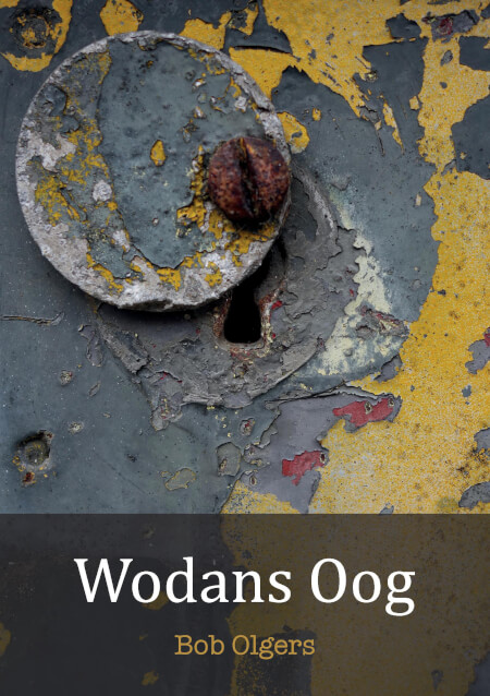 Cover Wodans Oog