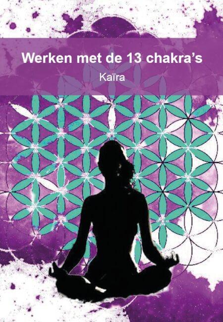 Cover Werken met de 13 chakra's