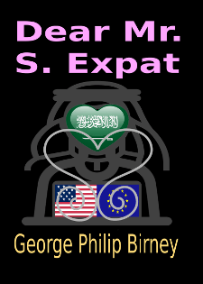 Cover Dear Mr. S. Expat