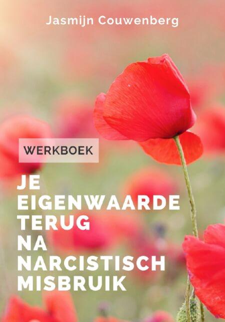 Cover Werkboek: Je eigenwaarde terug na narcistisch misbruik