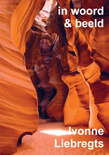 Cover In Woord & Beeld