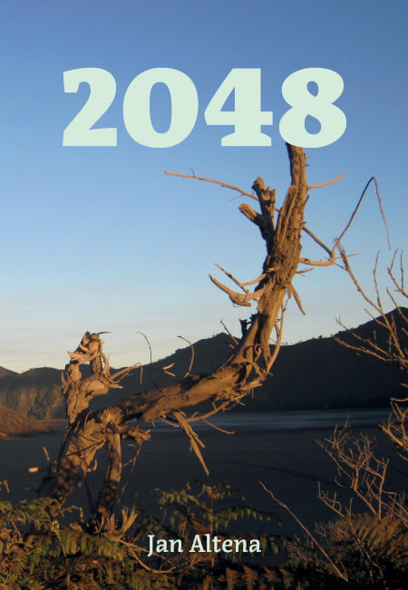 Cover 2048