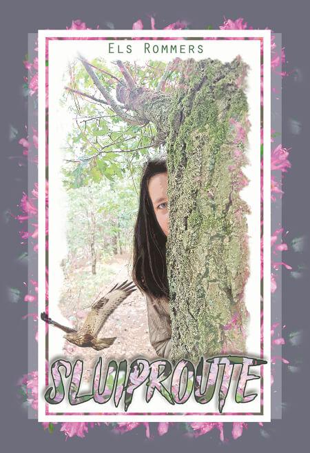 Cover Sluiproute