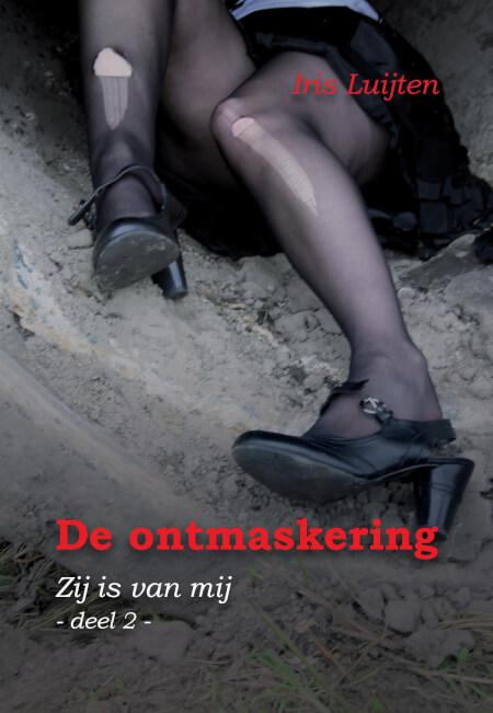 Cover De ontmaskering