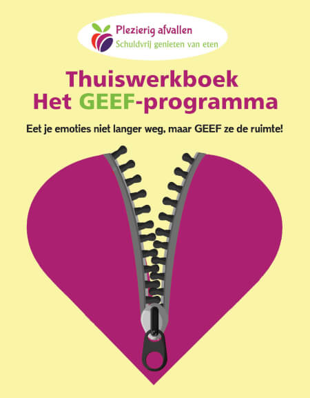 Cover Thuiswerkboek zonder online coaching, zonder GEEF-programma