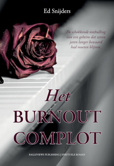 Cover Het Burnout Complot (PB)