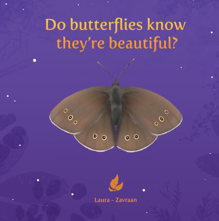 Cover Do butterflies know they're beautiful?