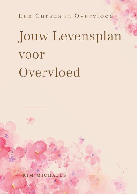 Cover Jouw Levensplan voor Overvloed