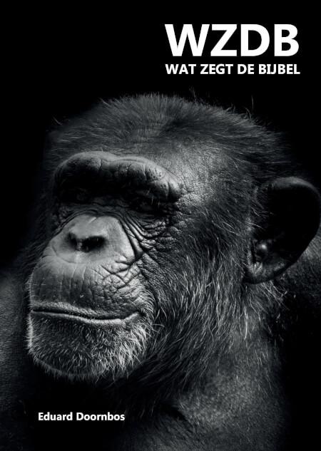 Cover WZDB Wat zegt de Bijbel